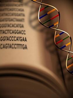 โรคทางพันธุกรรม โรคติดต่อทางพันธุกรรม