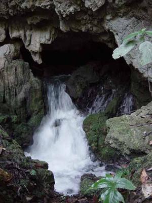 ผลการค้นหารูปภาพสำหรับ อุทยานแห่งชาติดอยภูคา ธารน้ำลอด น้ำออกรู