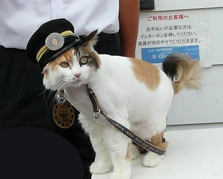 นิทามะ นายสถานีรถไฟคิชิตัวใหม่