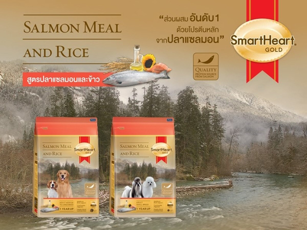 SmartHeart GOLD Salmon Meal&Rice