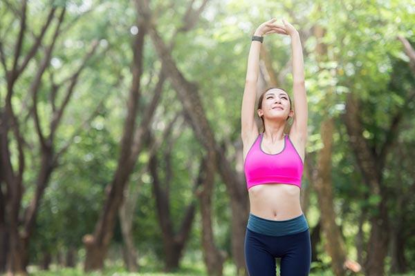 การยืดกล้ามเนื้อ