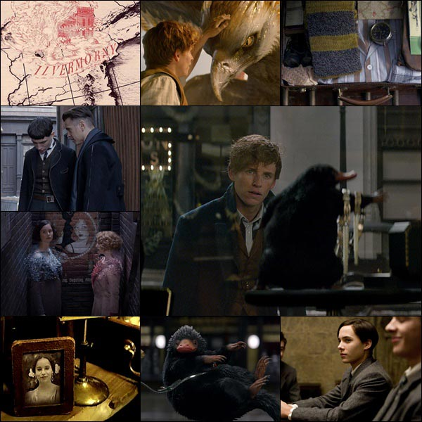 Fantastic Beasts Easter Eggs