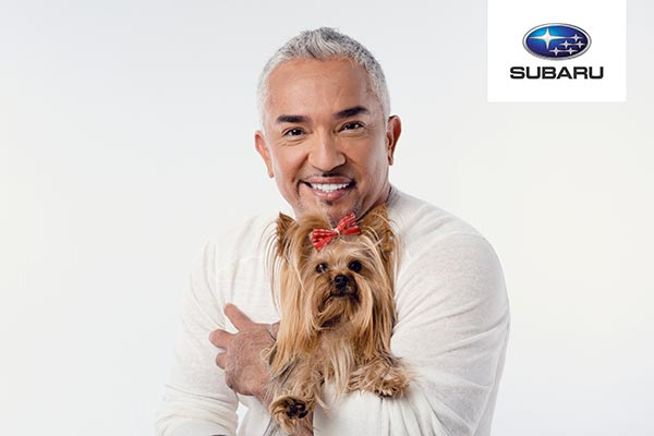 Subaru Loves Pets Roadshow 2017