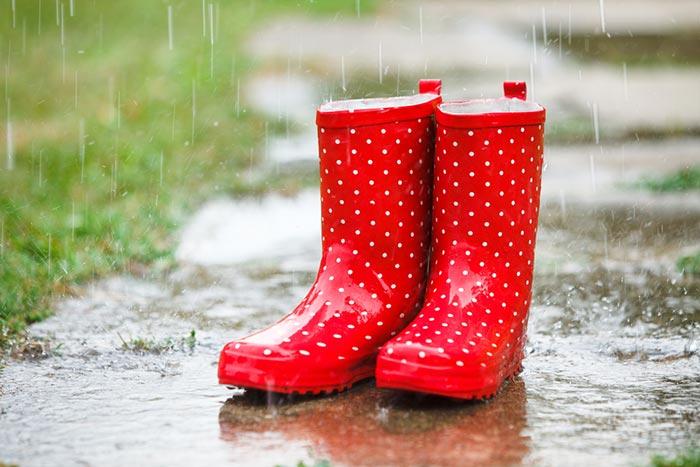 หน้าฝนขายอะไรดี