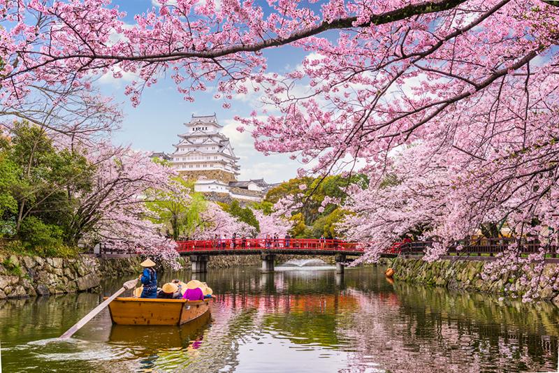 พยากรณ์ซากุระ 2019 ญี่ปุ่น