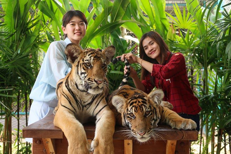 สถานที่ท่องเที่ยวไทย