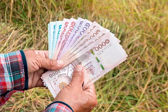 เงินเยียวยาเกษตรกร