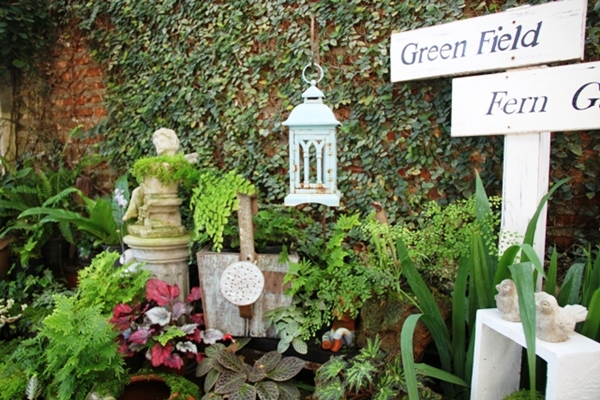 จัดสวนมอสส์สวย ๆ ให้เป็นสวนหย่อมข้างบ้าน