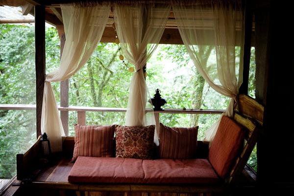 บ้านต้นไม้ ความลงตัวของ 2 ชีวิตระหว่างคนกับธรรมชาติ