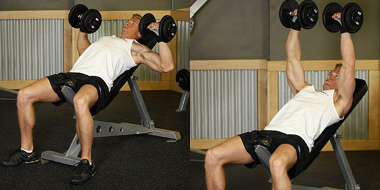 Incline bench dumbbell chest press
