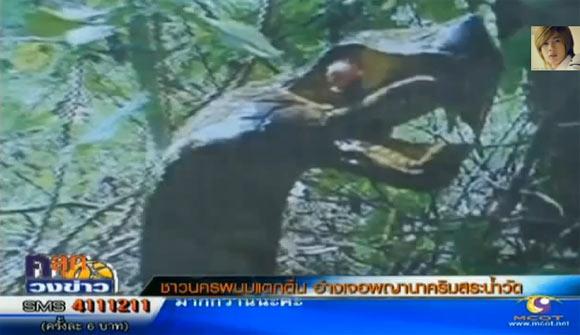ชาวบ้านฮือฮา ภาพงูยักษ์คล้ายพญานาคโผล่สระน้ำในวัด ที่นครพนม